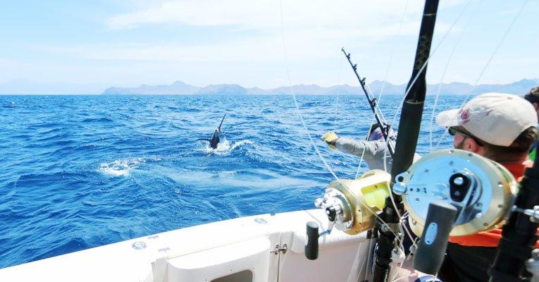 Start Fishing on Saltwater