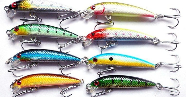 bait for freshwater fishing